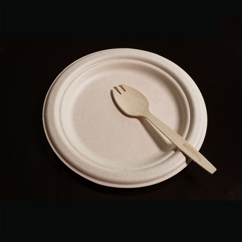 [ACC006] Plate and Fork
